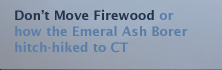 Don't Move Firewood Please!